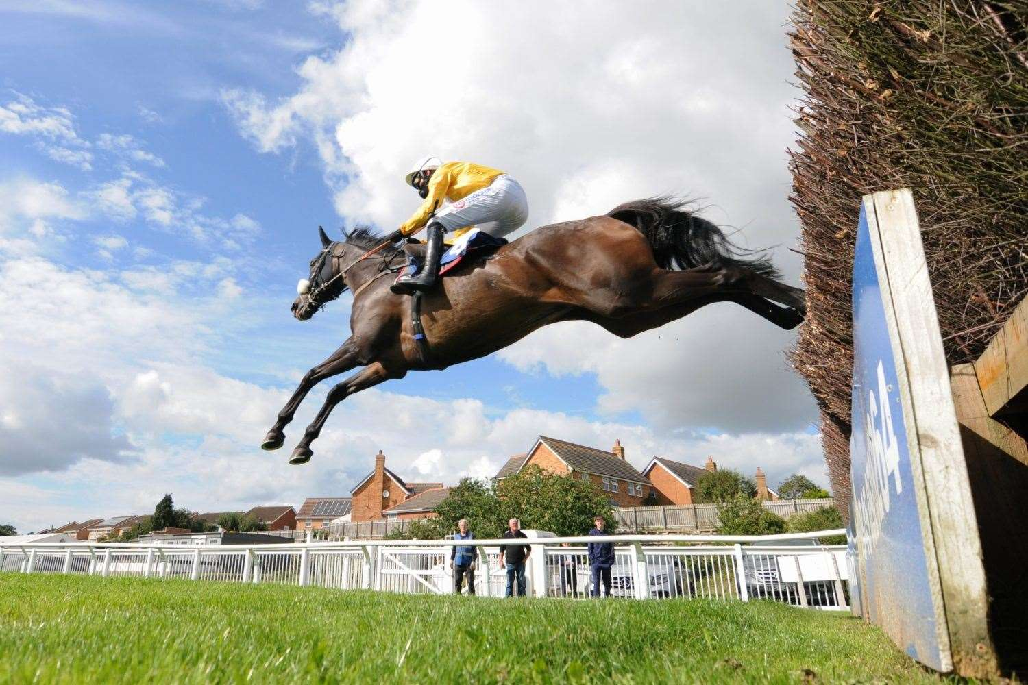 Darling Maltaix flies over a fence on his way to victory. Photo: Steve Davies / www.sdphotos.co.uk