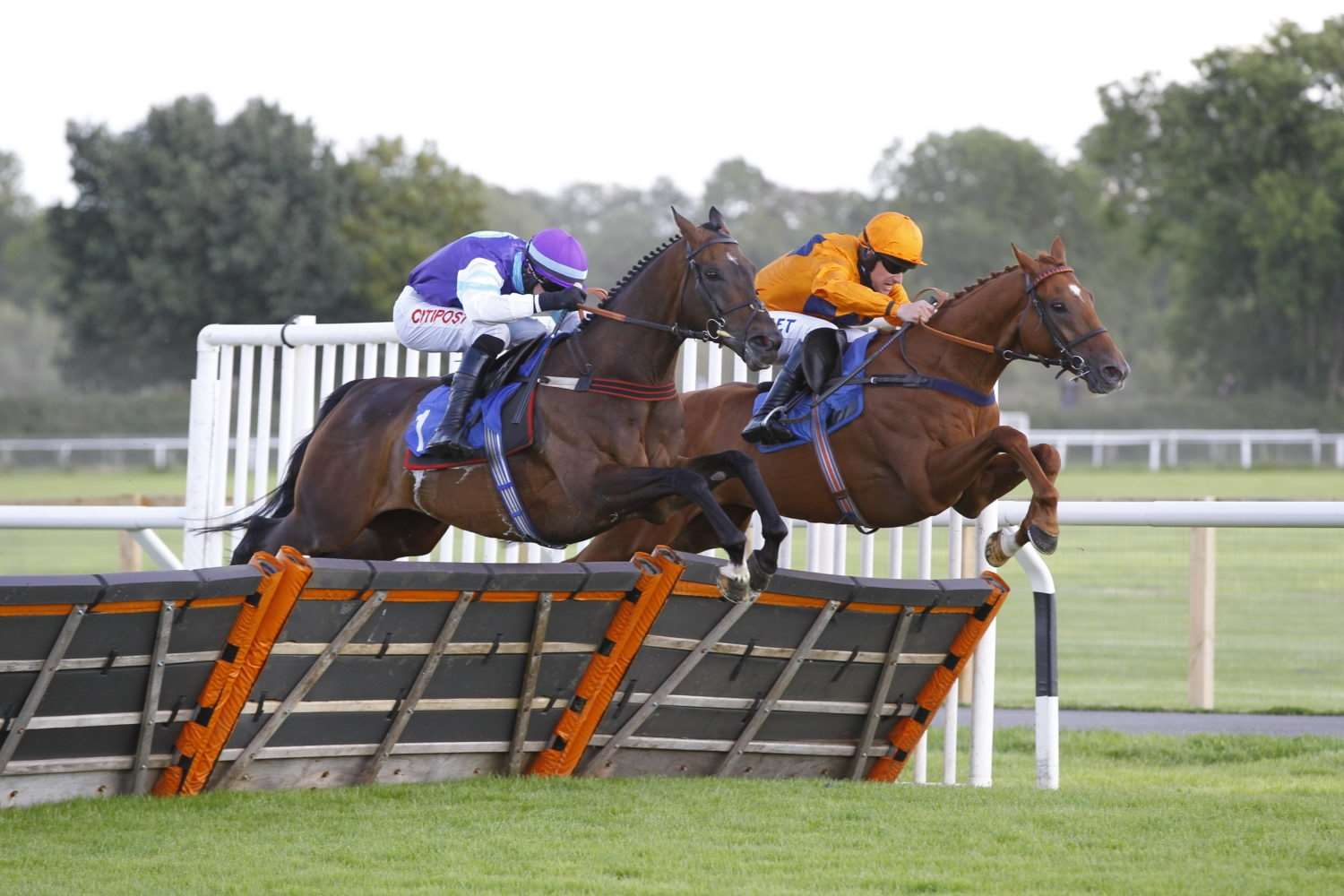 Jamacho (right) is challenged by Highly Prized at the final flight of the Class 2 Pardy's Dairies Fresh Milk Deliveries Handicap Hurdle, the feature race of Stratford's meeting on Saturday. Photo: Steve Davies / www.sdphotos.co.uk